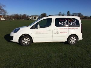 Dog Walking Vehicle - Citroen Berlingo
